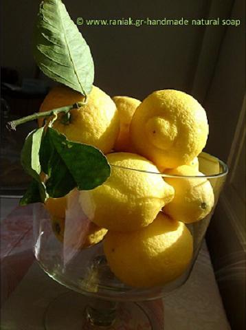 lemons-Rania-K-handmade-natural-soap-(2)c